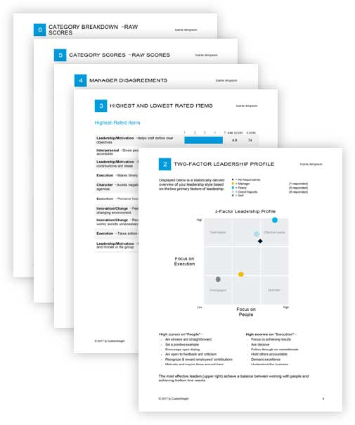 360 Survey Professional Reports
