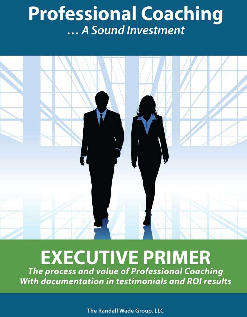Executive Primer